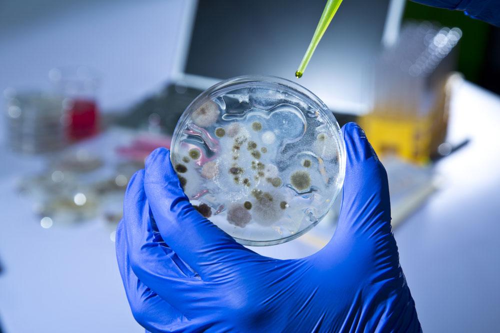 Análise do Ar ou Microbiológica